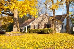 fall_house